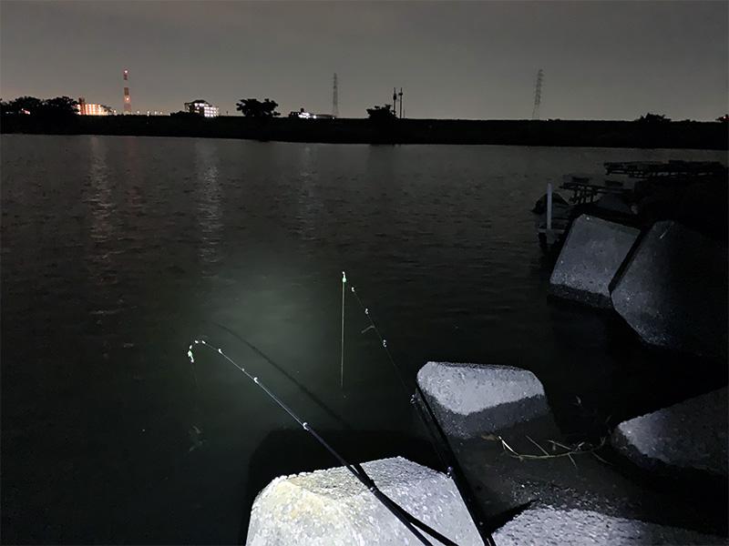 荒川のうなぎ釣りポイント テトラポッドの先端で落とし釣り