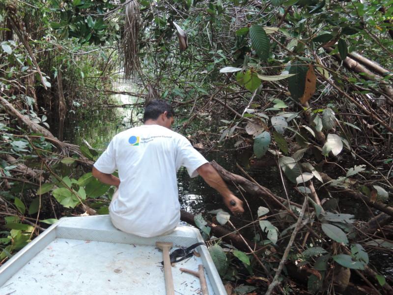 アマゾン川のジャングルの中をボートで進んでいく様子