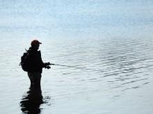 ブラウントラウトの行動の法則とは?習性を利用した釣り方や釣り場