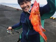 伊豆大島・式根島でアカハタ釣り!ジグヘッドとワームで釣る美味な根魚。サメの目撃動画も!