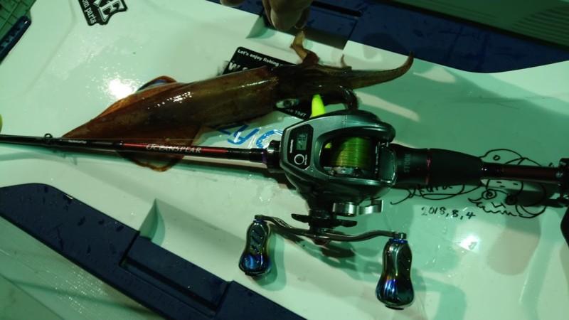 メタルティップラン専用ロッド「オーシャンスピア」で釣ったイカ