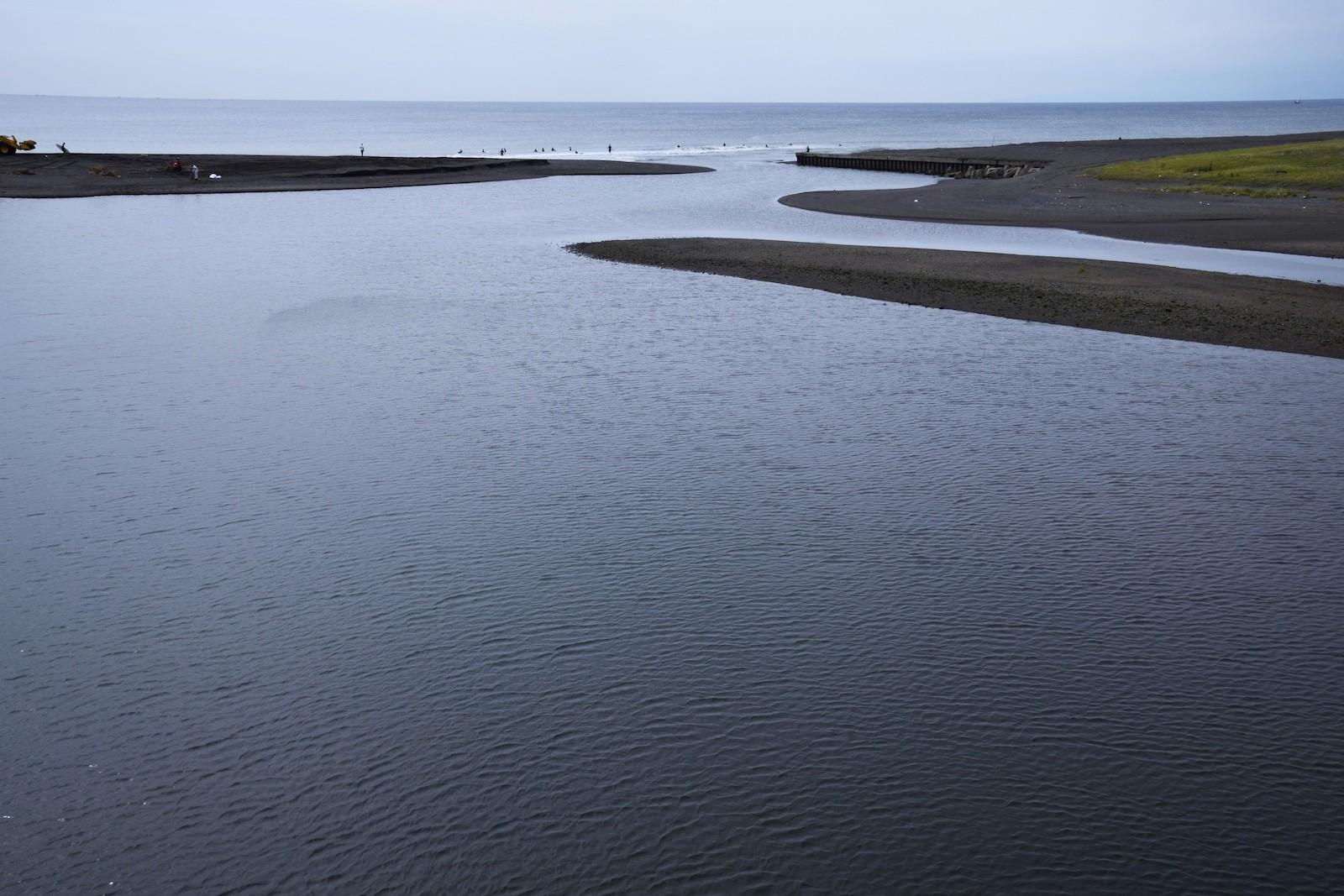 河口付近の汽水エリア
