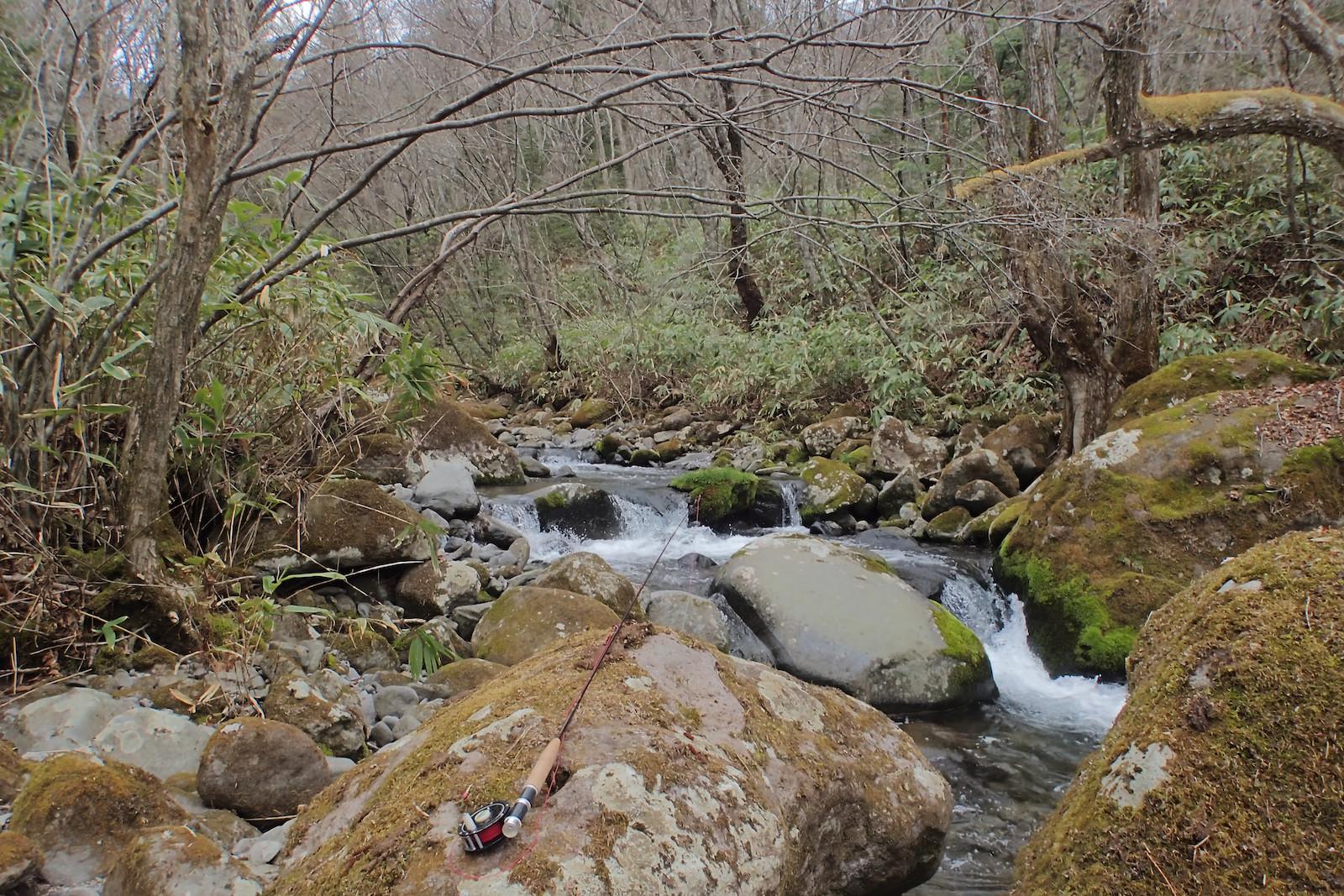 早春の山岳渓流とフライロッド