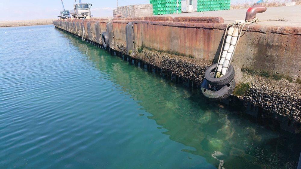 森漁港の漁港前の壁際