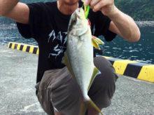 伊豆大島でショアジギングデビューしたら堤防からカンパチやカツオが釣れた!